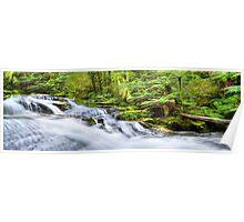 Triplet Falls Panorama Poster