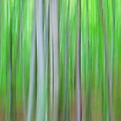 Dancing trees I by Maria Ismanah Schulze-Vorberg