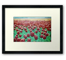 Tulips on the Horizon Framed Print