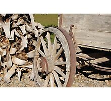 Wagons West Photographic Print