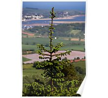 Tree View Poster