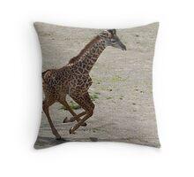 Momma Look at Me Go  5 week old Zuri - Cincinnati Zoo Throw Pillow