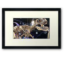 King's Bones Framed Print