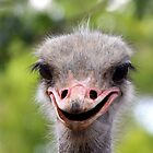 Smile! by lensbaby