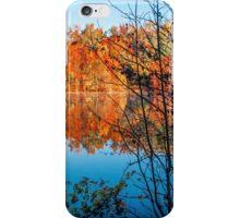 Autumn Contrast iPhone Case/Skin