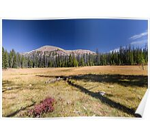 Mountain over fall meadow Poster