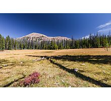 Mountain over fall meadow Photographic Print