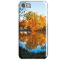 Framed Autumn iPhone Case/Skin