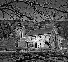 Valle Crucis Abbey by Jenn Louise
