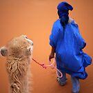 Sahara by Jodi Fleming