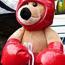 The Boxing Kangaroo by DEB CAMERON