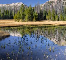 Pond with Mountain reflection Sticker