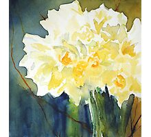 Daffs for Mum Photographic Print