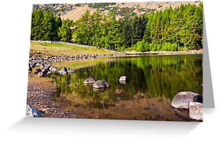 Reflections - Blea Tarn by Trevor Kersley