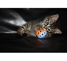 kitten playing ball Photographic Print