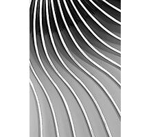 Forks V Photographic Print