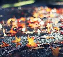 A piece of autumn by fRantasy