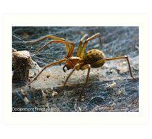 Large Spider Art Print