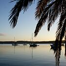 Lakeside Dawn - Toronto Foreshore, NSW by Rochelle Buckley