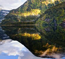 Reflecting by Mel Brackstone
