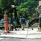 """""""High Noon Dogs Walker In Harlem"""" by mileseca"""