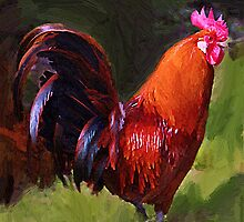 Rooster by artstoreroom