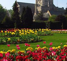 Abbey Gardens 2011 by wiggyofipswich