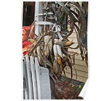 a corn stalk in the yard Poster