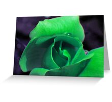 Green Rose Greeting Card