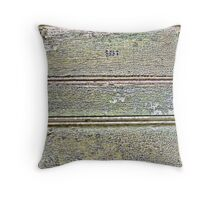 Alcatraz door Throw Pillow