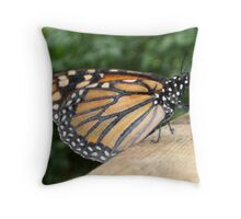 Closed Wings & Resting - Monarch Butterfly Throw Pillow