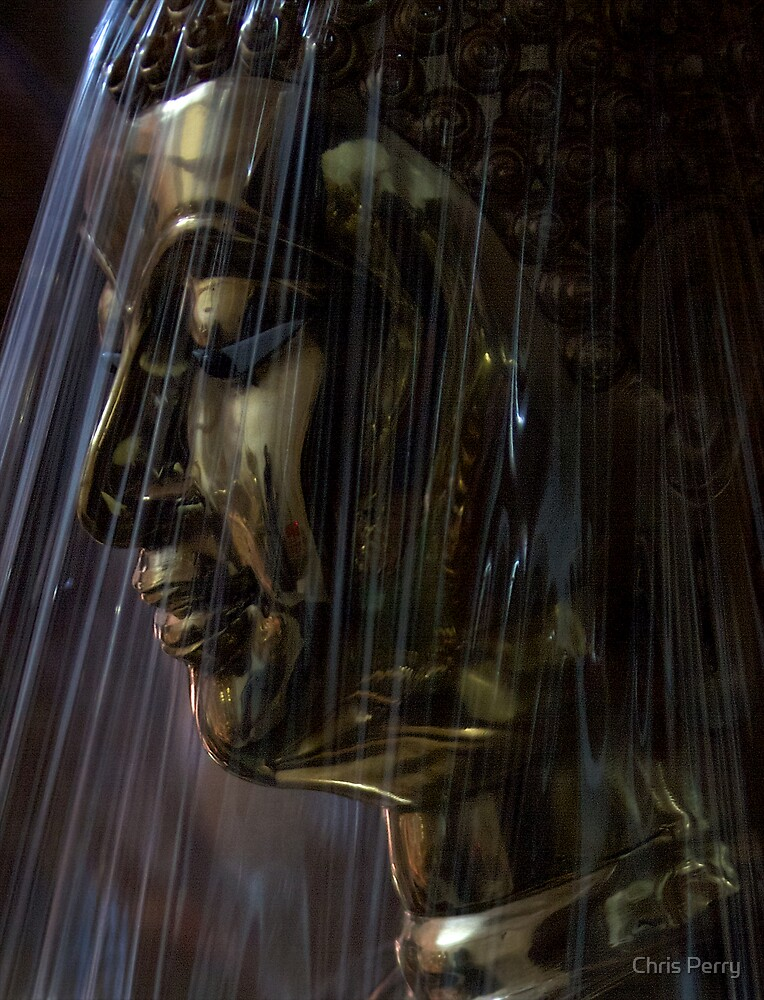 Giant buddha behind cellophane by Chris Perry