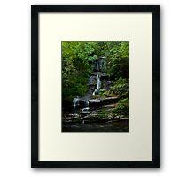 Tom's Branch Falls - Smoky Mountains Framed Print