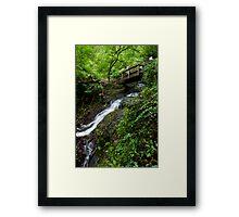Lower Juneywhank Falls - Smoky Mountains  Framed Print