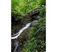 Lower Juneywhank Falls - Smoky Mountains  Photographic Print