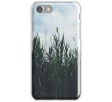 SeniorDesigns Rhode Island Reeds iPhone Case/Skin