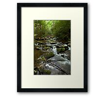Meig's Creek - Spring in the Smoky Mountains Framed Print
