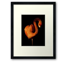 Natural Art ~ Part Two Framed Print