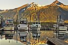 Small Boat Harbour at Skagway by Yukondick