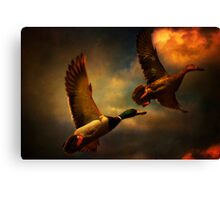 Flying Ducks Canvas Print