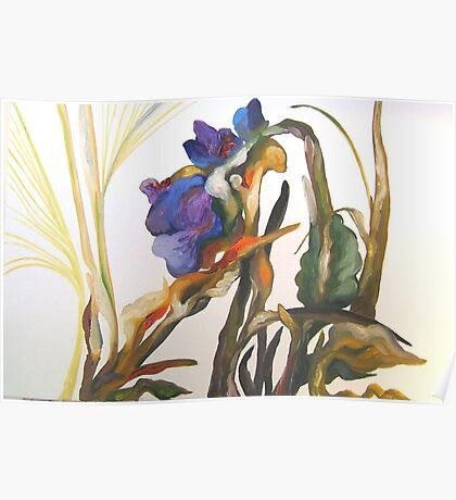 Bearded Iris, Big Sur Woods Poster