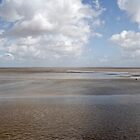 The Severn estuary at low tide. by cofiant