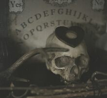Cabinet of curiosities by MsDunwich