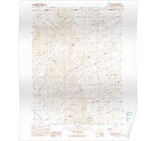 USGS Topo Map Nevada Disaster Peak 318583 1991 24000 Poster