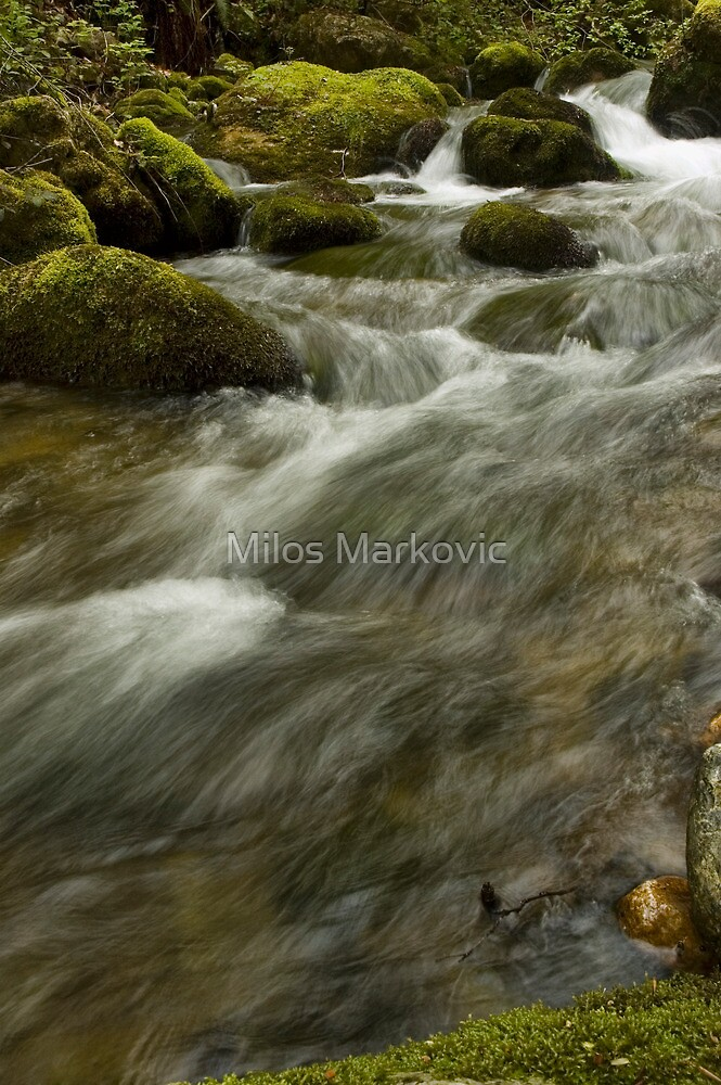 Fast waters by Milos Markovic