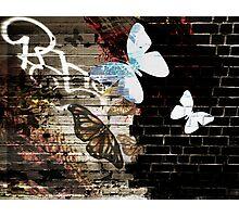 Metamorphose (Urban butterfly art) Photographic Print