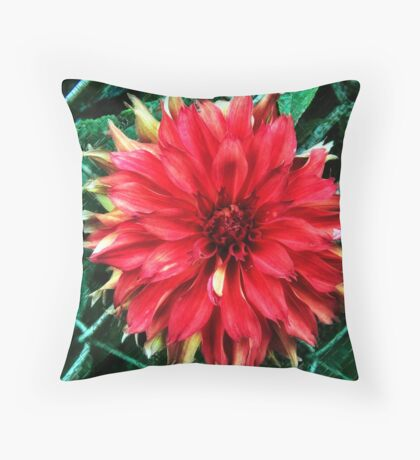 Unfettered Throw Pillow