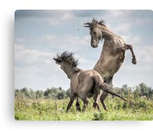 The rate of reaction Canvas Print