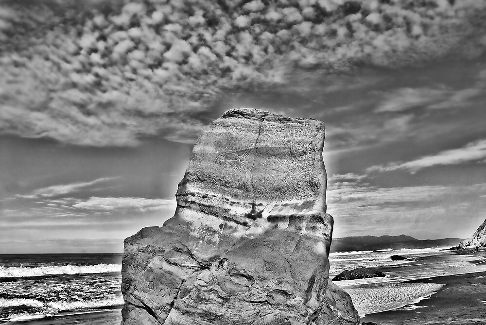 BW Fish Rock by vincefoto