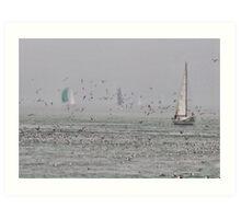 Sailing with birds Art Print